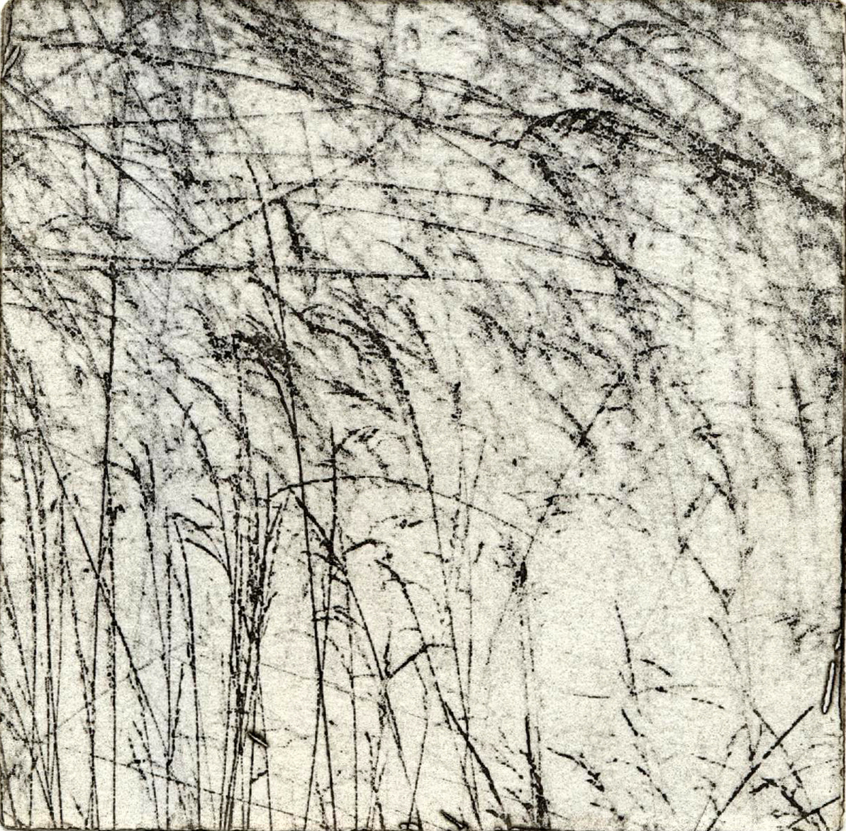 Sarah Roach - Trace - Photopolymer Etching - 10cm x 10cm