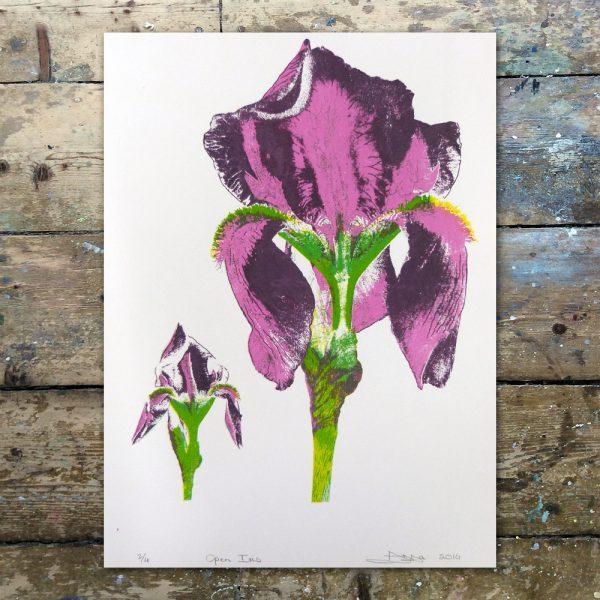 AnnaJohnson-Open Iris1
