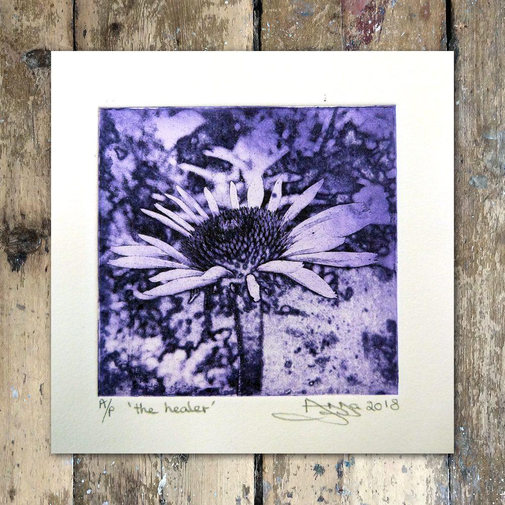 AnnaJohnson-The Healer (Echinacea)1