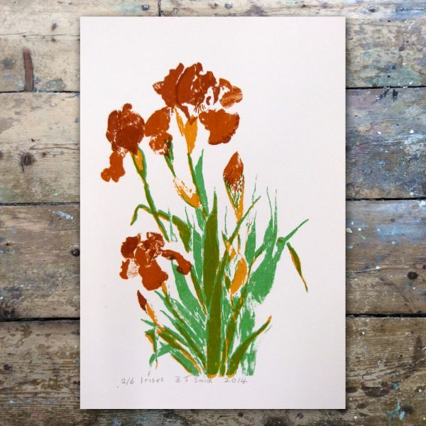 Barabara Smith-Irises1