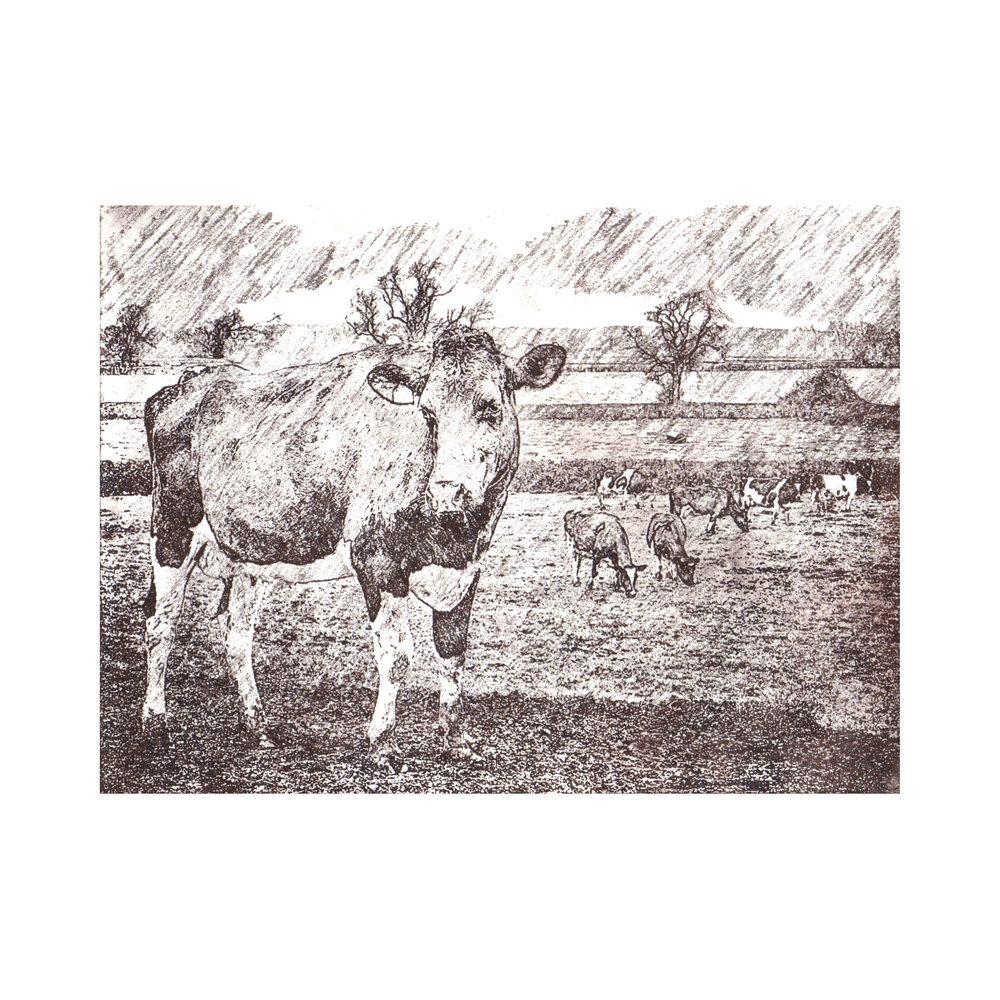 Happy Heifers (brown)