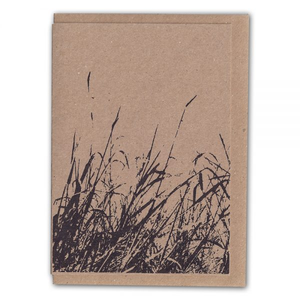 SarahRoach-Grasses1