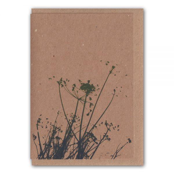 SarahRoach-Grasses4