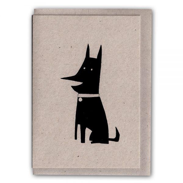 StevenAllen-Scaredy-Indifferent Dog