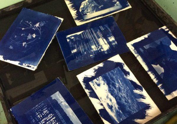 cyanotype photography 2