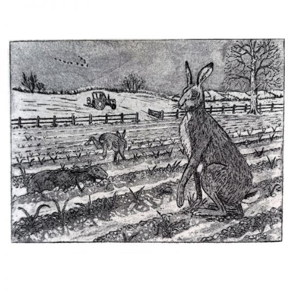 print-hares-01
